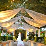 Wedding-Canopies-~~element52~~96.jpg & Wedding-Canopies-